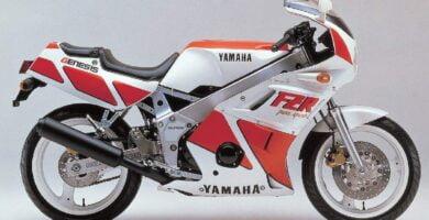Manual Moto Yamaha FZR 400 Reparación y Servicio
