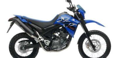 Manual Moto Yamaha XT 660 2008 Reparación y Servicio