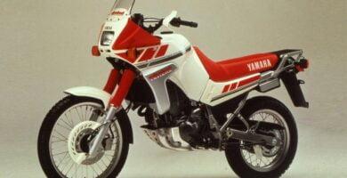 Manual Moto Yamaha XTZ 660 1991 Reparación y Servicio