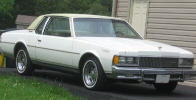 Caprice1984