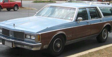 Customcruiser1981