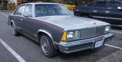 Malibu1981