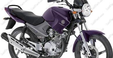 Manual de Partes Moto Yamaha 43B1 2010 DESCARGAR GRATIS