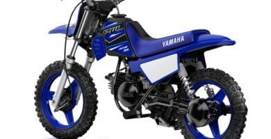 Manual de Moto Yamaha 3PTV 1999 DESCARGAR GRATIS