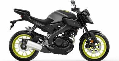 Manual en Español Yamaha MT125 2018 de Usuario PDF GRATIS