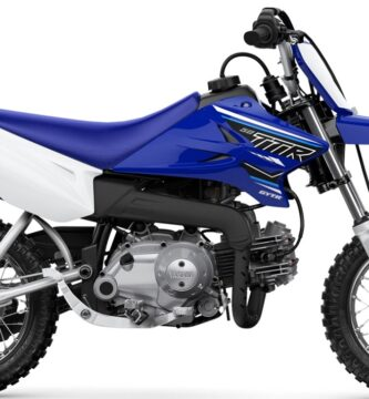 Manual Yamaha TT-R110E 2021 de Usuario PDF GRATIS